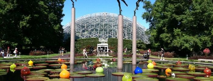 Missouri Botanical Garden is one of 2017 City Guide: Saint Louis.