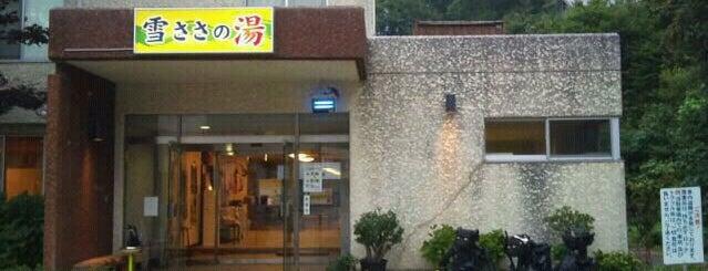 苗場温泉 雪ささの湯 is one of Toyokazuさんのお気に入りスポット.