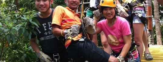 Sky Fox Super Ride is one of VACAY - KOH SAMUI.