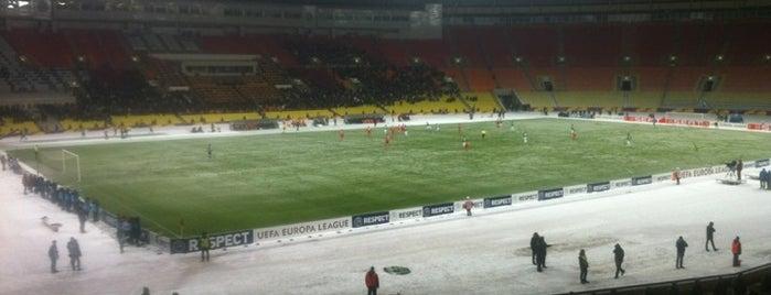 Estadio Olímpico Luzhniki is one of Sports Arena's.