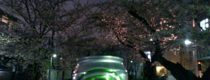 北沢川緑道 is one of せたがや百景 100 famous views of Setagaya.