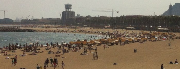 Olympic Beach is one of Simon : понравившиеся места.