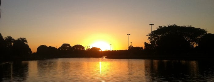 Parque da Cidade Sarah Kubitschek is one of Brasília.