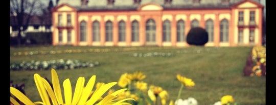 Orangerie is one of Darmstadt - must visit.