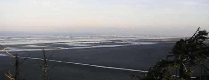 The Washington Coast is one of Stevenson Favorite US Beaches.