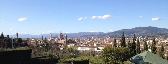 Hotel Villa La Vedetta is one of Firenze.