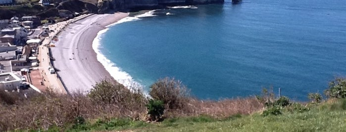 Falaise d'Amont is one of Things to do in Etretat.