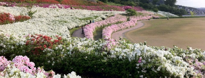 大乗寺丘陵公園 is one of Japan - Kanazawa.