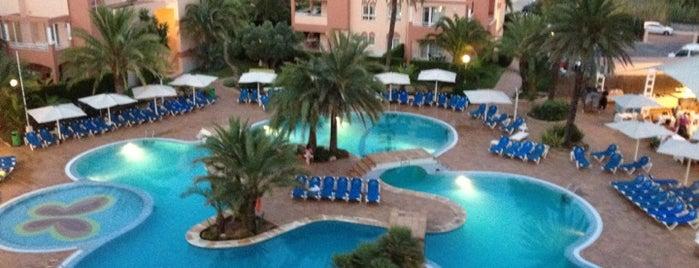 Oliva Nova Beach & Golf Resort is one of Lugares favoritos de Oscar.