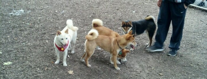 Bloomingdale Dog Park is one of My Good Dog NYC: NYC Dog Runs.
