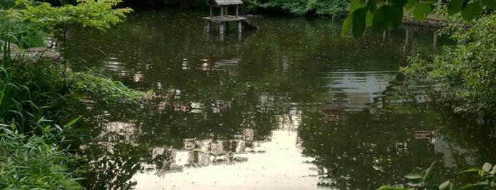 つりがね池公園 is one of せたがや百景 100 famous views of Setagaya.