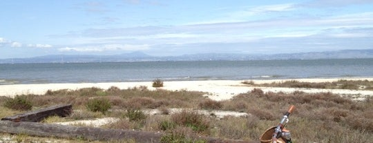 Foster City - SF Bay Trail is one of bay area - peninsula.