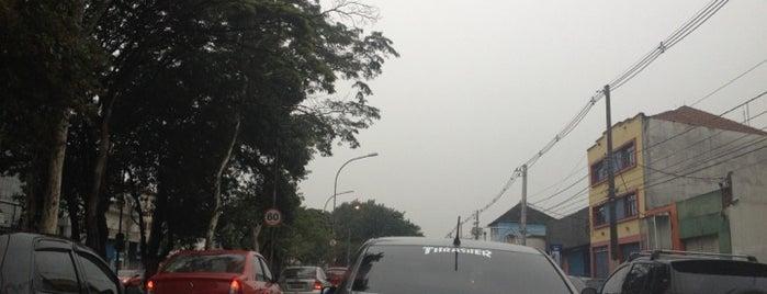 Avenida Cruzeiro do Sul is one of De carro no transito de sp.
