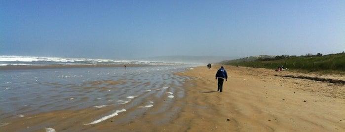 Goolwa Beach is one of South Australia (SA).