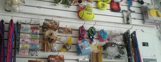 Moksha Pet Spa & Boutique is one of Distribuidores DoGift.