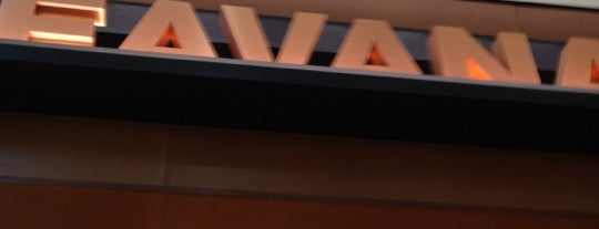 Teavana is one of Knoxville.