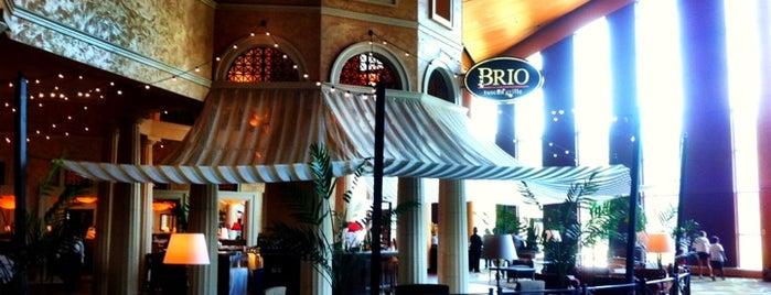 Brio Tuscan Grille is one of Lugares favoritos de Kyle.