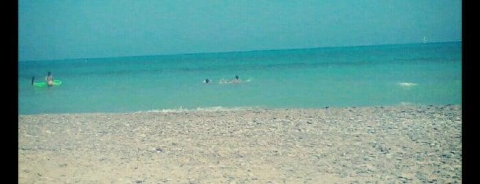 Playa de Corinto / Malvarrosa is one of Lieux qui ont plu à Ruth.