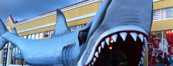 Shark Attack Gift Shop is one of Raleigh, NC.