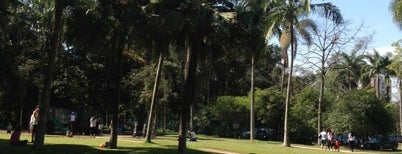 Parque Burle Marx is one of Sampa 460 :).