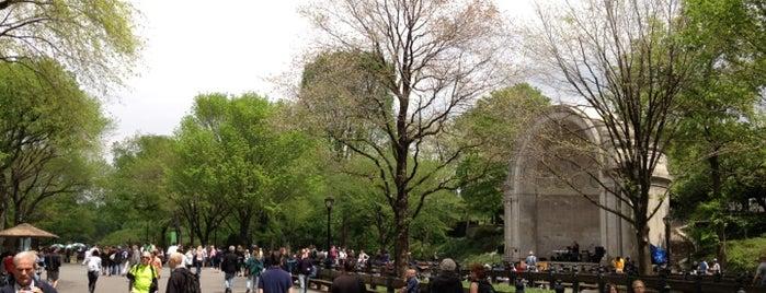 Central Park Mall è uno dei 101 posti da vedere a Manhattan prima di morire.
