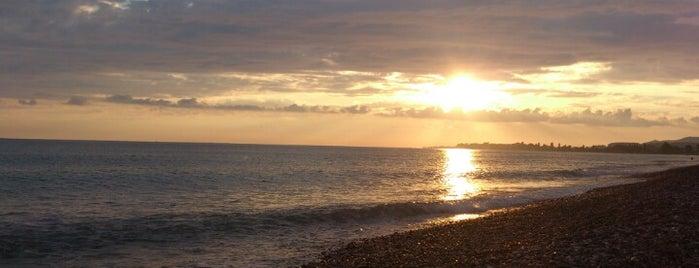Пляж Цандрыпш | ცანდრიფშის პლაჟი is one of Irina : понравившиеся места.