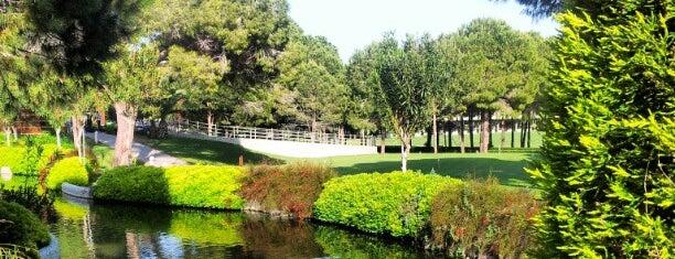 Gloria Golf Club is one of Lugares favoritos de Tugba.