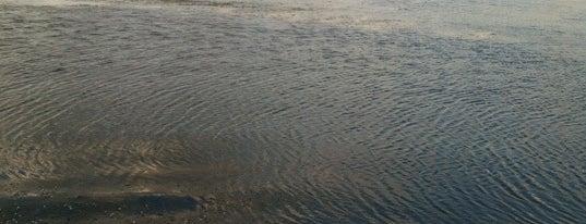 Nest Lake is one of Locais curtidos por Lance P.