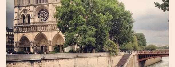 Petit Pont — Cardinal Lustiger is one of Paris.