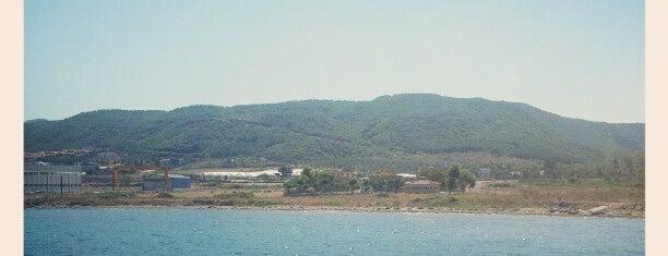 Özten Yaşam Konutları is one of Orte, die Özten İnşaat Emlak gefallen.