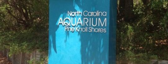 North Carolina Aquarium at Pine Knoll Shores is one of Atlantic Beach To-Do List.