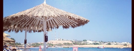 Hilton Fayrouz Resort is one of Sharm Elsheikh.