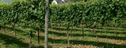 Harford Vineyard & Winery is one of Wineries Visited.