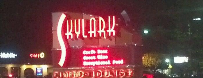 Skylark Diner is one of บันทึกเดินทาง New York.