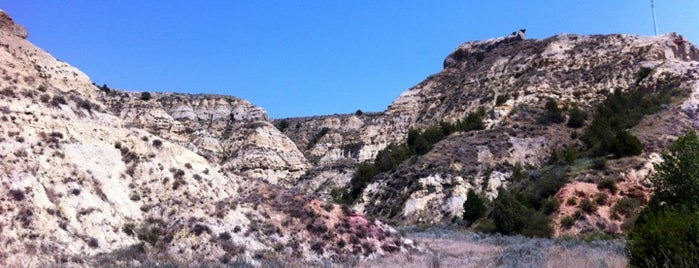 Theodore Roosevelt National Park is one of National Parks.