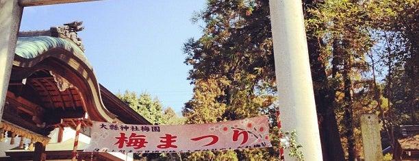 大縣神社 is one of Visit Nagoya.