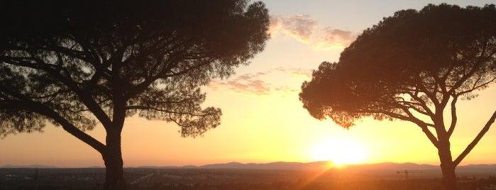 Parque Dehesa de la Villa is one of Spain.