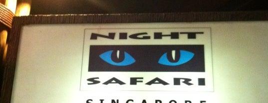 Night Safari is one of Singapore.