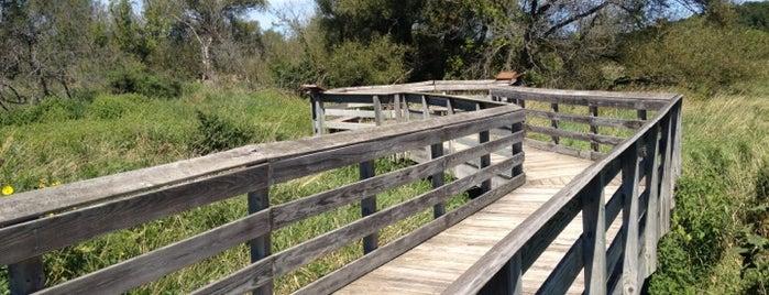 Military Ridge Trail - Sugar River Observation Platform is one of Lieux sauvegardés par Jennifer.
