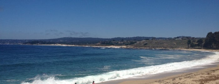 Monastery Beach is one of Lilyさんのお気に入りスポット.