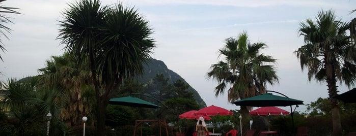 산방산탄산온천 is one of Jeju.