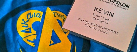 Delta Upsilon Fraternity Leadership Institute is one of Chicago hangouts.