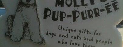 Mollys Pup-purr-ee is one of random.