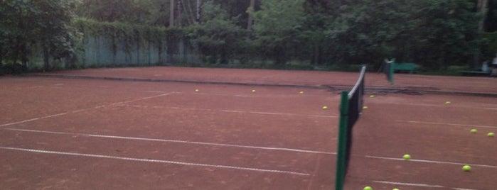 Теннисный клуб «Светлановский» is one of Теннис.