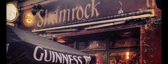 Shamrock Irish Bar is one of Hamburg Top Picks.