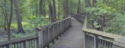 Wegerzyn Gardens MetroPark is one of USA Cincinnati.