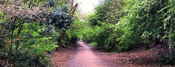 Parkland Walk (Finsbury Park to Crouch End Section) is one of London - to do.
