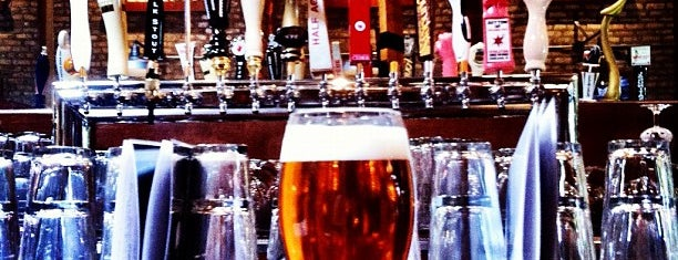 The Beer Bistro North is one of Chicago Fire Bars and Pubs.