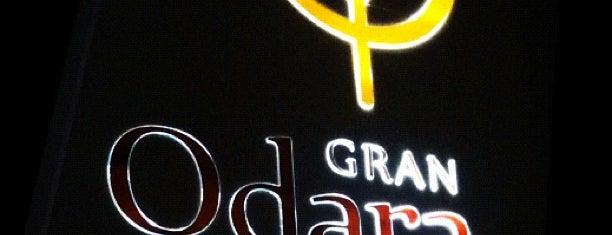 Hotel Gran Odara is one of Guta'nın Beğendiği Mekanlar.