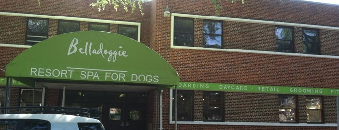 Belladoggie Resort & Spa For Dogs is one of Lieux qui ont plu à Greg.